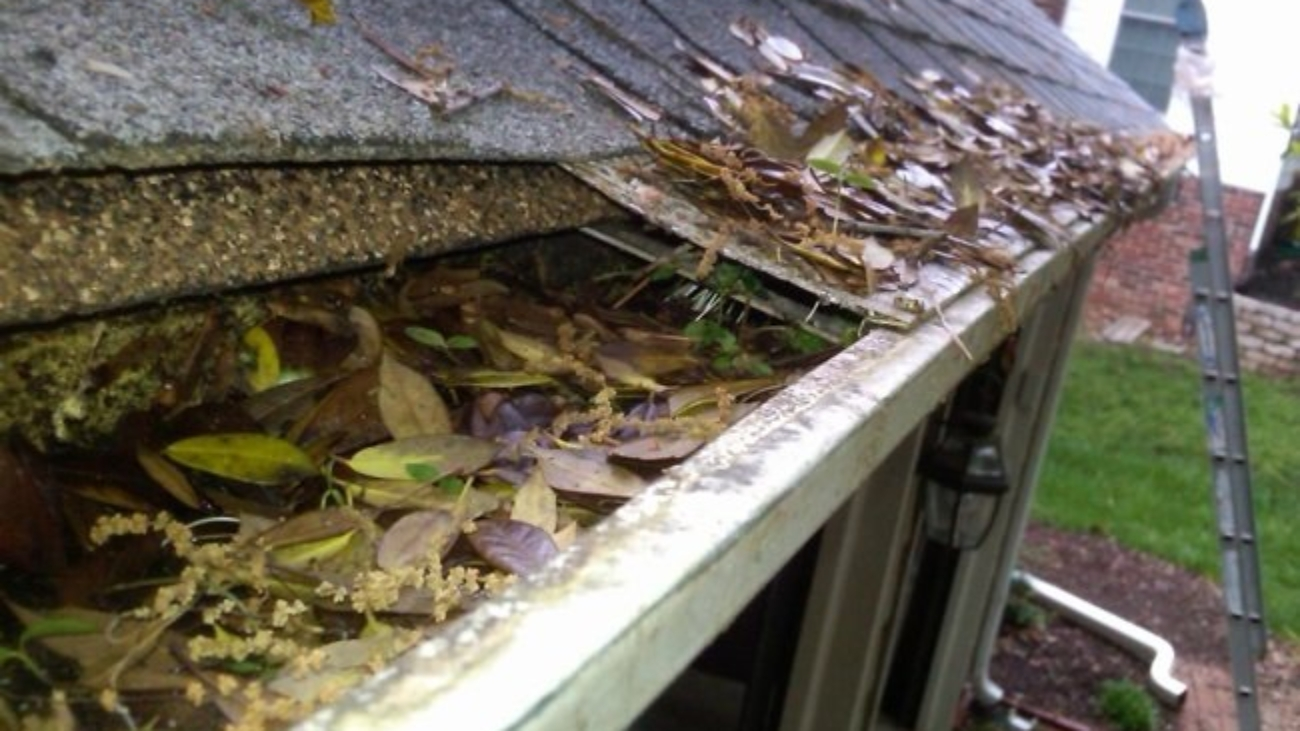 Spring Cleaning Maintenance on Your Roof